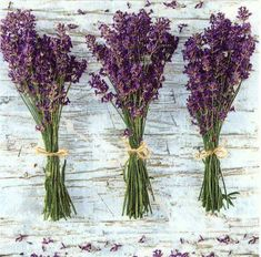 Napkin decoupage with this charming print of 3 bunches of lavender, printed in Poland on 3-ply paper. These are perfect for paper arts and crafts of many kinds,including collage and decoupage on glass, wood, candle, scrap booking , mixed media, and DIY projects. An excellent complement for the dining table and parties.  Each napkin is a standard luncheon size, measuring 6.5 x 6.5 (16.5 cm x 16.5 cm) folded, 13 x 13 (33 cm x 33 cm) when unfolded. You will receive 4 napkins with this order…