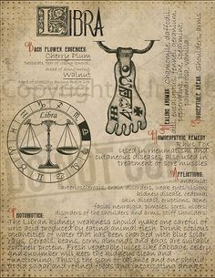7 pages set about LIBRA Astrological Sign Correspondences. They are an ideal addition to your own Wicca Book of Shadows. Wiccan Spell Book, Wiccan Spells, Witchcraft, Magick, Pagan, Libra Art, Astrology Zodiac, Libra Sign, Astrological Sign
