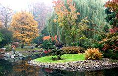 Znalezione obrazy dla zapytania japoński ogród