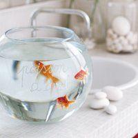 Un bocal à poisson gravé de quelques mots - Marie Claire Idées - A installer dans la salle de bain ! ;)