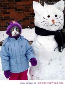 funny Christmas pics snow cat