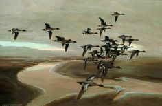 Flying Geese - Peter Markham Scott