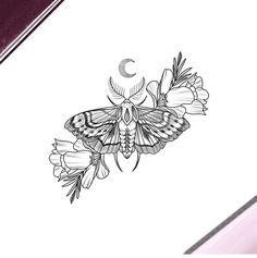 moth by nathalybonila