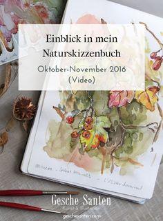 Einblick in mein Naturskizzenbuch (nature journal) im Herbst. Techniken vor allem Aquarell, Aquarellskizzen, Bleistift, Tinte. Motive und Inspiration aus der Natur