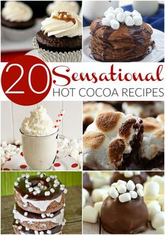 OMG! I love like every one of these 20 Out of the box sensational hot cocoa recipes. Someone, please make me #5 today...I'm begging.