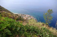 Ach und dann noch: Delfine! Dann geht es ein kurzes Weilchen am Hang entlang. Madeira, Portugal