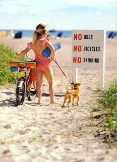 Dogs, bicycles and swimming <3