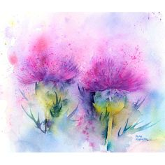 Rachel McNaughton - Thistles watercolor