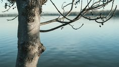 Julien Douvier Animated photography - Cinemagraphs