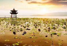 Image result for hangzhou landscape Hangzhou, Landscape, Google, Image, Scenery, Corner Landscaping