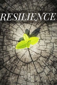 Resilience is the ability to manage and adapt to life's challenges without inappropriately activating a chronic stress response.