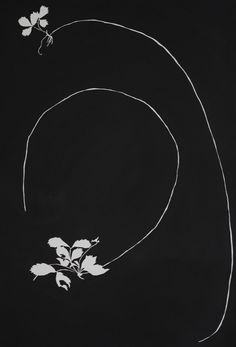 Strawberry Vine by Susan Hable, india ink on paper, 30x44