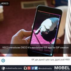#VSCO introduces #DSCO it's standalone #iOS app for GIF creation