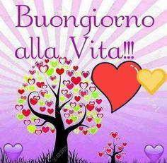 Buongiorno Good Morning, Night, Pictures, Home Decor, Dolce, Art, Cristiani, Betta, Lisa