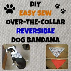 Easy sew, over-the-collar, dog bandana... my first project, great for super beginners!