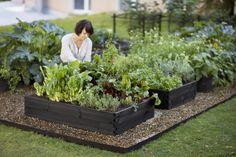 like the garden boxes painted black, Potager Garden, Edible Garden, Garden Beds, Vegetable Garden, Garden Landscaping, Herb Garden Design, Plantation, Water Plants, Dream Garden