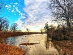 Beautiful morning on the lake ❤️ Tara Richelle photography , lake, ducks, geese , sky , sunrise, sunsets , clouds , beautiful, ethereal , fine art photography , landscape , nature