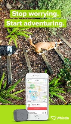 The all-in-one pet tracker with advanced location & activity tracking. There's a smarter way to keep your pet healthy & safe with Whistle 3.