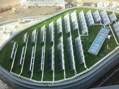 height of a green roof - Google Search