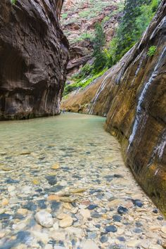 https://flic.kr/p/wp51c1 | The breaking of a wave cannot explain the whole sea… | - Vladimir Nabokov.  | facebook | 500px | ferpectshotz |  Another shot from our Zion Narrows hike we did couple of months ago. I was really intrigued by the color of the stones and rocks at the bottom of the stream and I used a warming polarizer to bring them out a bit.  Thanks for visiting and have a nice day..