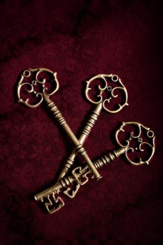 burgundy.quenalbertini: Gold keys on burgundy