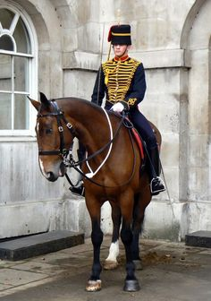 """""""The Kings Troop Royal Horse Artillery is based in Woolwich. It's been a purely ceremonial troop since 1947, when all the artillery was mechanised.""""WW1 style tack, UP bridle and saddle"""