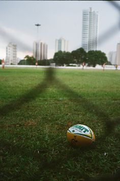 Rugby. New obsession 2013