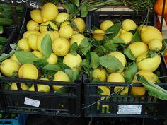 luscious lemons, Campo di Fiori, Rome Limoncello, Rome, Restaurant, Vegetables, Fruit, Recipes, Diner Restaurant, Vegetable Recipes, Rome Italy