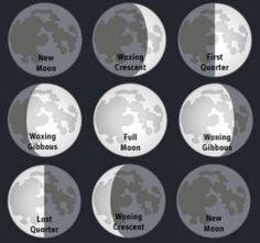 GARDENING...Using Moon PHASES