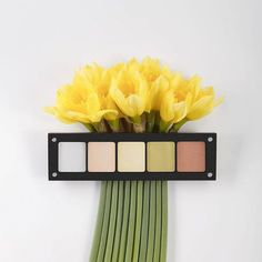 A boost of energy with our Spring inspired Freedom System palette featuring #318, #351, #286, #133, & #129.  ____________________________ #INGLOT #INGLOTUSA #colormeINGLOT #boutique #estilistanboutique #cosmetics #beauty #jewellery #nailpolish