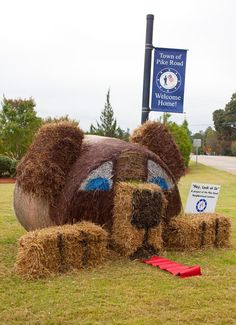 Hay Bale Decorating | Puppy Dog Holidays Halloween, Halloween Decorations, Christmas Decorations, Dog Halloween, Halloween Party, Hay Bale Decorations, Straw Art, Hay Bales, Straw Bales