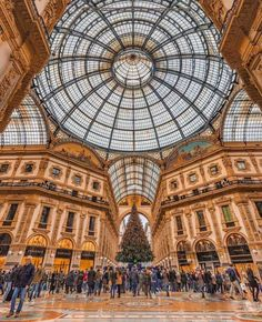 "556 Likes, 6 Comments - Authentic Italy (@authenticitalytravel) on Instagram: ""Spending a Christmas vacation in the fashion capital of the world is unlike anywhere else in Italy!…"""