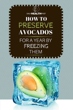 Avocados are a delicious food, recently gaining newfound popularity as a _superfood_ after years of being largely ignored due to their high calorie count.� This is why it is important to preserve avocados.