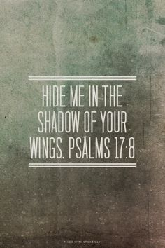 Psalms 17:8 hide me in the shadow of your wings. Scripture, follower of Christ