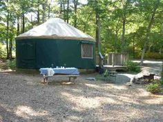 Camping and campgrounds in Shawme Crowell State Forest, Massachusetts. Reserve a campsite online or learn more about lodging and activities at Shawme Crowell State Forest. State Forest, Campsite, Lodges, Vacation, Places, Camping, Cabins, Vacations, Holidays