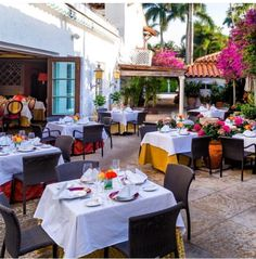 Renato's Palm Beach, Florida outdoor patio, flowers, roses