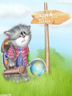 WORLD TRAVELING CAT