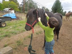 Kaleb, brushing down his buddy Cricket before a ride! Submission from Margo Land. #horses #horseriding #barnlife