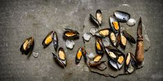 Toutes nos recettes aux moules Bouillabaisse, Marie Claire, Eggplant, Sea Shells, Seafood, Recipes, Pisces, Classic, Eggplants