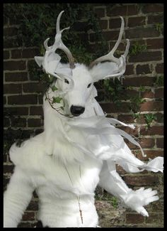The White Stag - close up by Qarrezel on DeviantArt