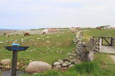 Kongevegen - Varhaug - Bodle Around The Worlds, Travel, Voyage, Trips, Traveling, Destinations, Tourism