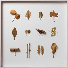 Dried Leaves Crocheted into Delicate Sculptures by Susanna Bauer Dry Leaf Art, Pressed Leaves, Leaf Drawing, Colossal Art, Small Sculptures, Photo Projects, Community Art, Crochet Flowers, Decoration
