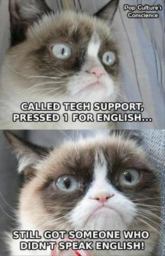 (legitimately grumpy this time!) - Grumpy Cat - Ideas of Grumpy Cat - Grumpy Cat . (legitimately grumpy this time!) The post Grumpy Cat . (legitimately grumpy this time!) appeared first on Cat Gig. Grumpy Cat Quotes, Funny Grumpy Cat Memes, Funny Cats, Funny Animals, Funny Memes, Animal Memes, Memes Humor, Animal Sayings, Funny Quotes