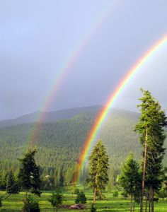 """This was truly the most brilliant rainbow I have EVER seen! I didn't change the color of this photo at all. It really was this vivid. Cool Pictures, Cool Photos, Beautiful Pictures, Rainbow Promise, Rainbow Photo, Rainbow Magic, Weather Underground, Sky And Clouds, Over The Rainbow"