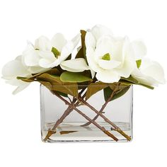 Pier 1 Imports White Faux Magnolia Arrangement ($111) ❤ liked on Polyvore featuring home, home decor, floral decor, white, magnolia home decor, white home decor, outdoor home decor, artificial arrangement and outside home decor