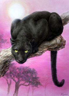 KAYOMI HARAI ART Black Panther / Leopard
