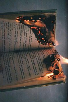 This picture is gorgeous, but like it hurts me to see a book in pain. Just appreciating photography. :,)