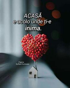 True Words, Raspberry, Quotes, Wonderland, Quotations, Raspberries, Quote, Shut Up Quotes, Shut Up Quotes