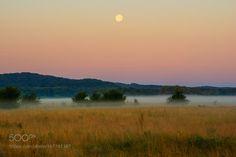 misty summer morning by andriysolovyov  autumn mist field sky ukraine landscape morning nature outdoor summer moon grass green village earth