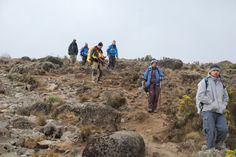Picking our way between the rocks on the Mweka Route; Lemosho, day 6, afternoon.